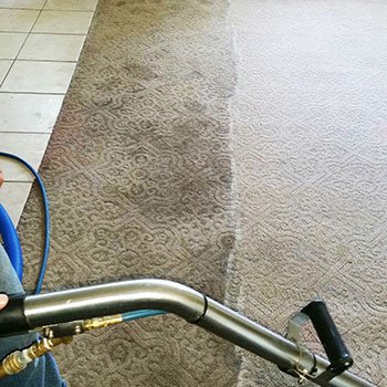 carpet-cleaning-in-action